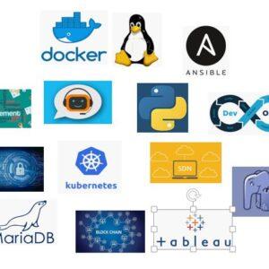 IT Automation, Programming & Database
